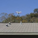 roof inspectors new orleans