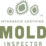 Mold Inspection New Orleans