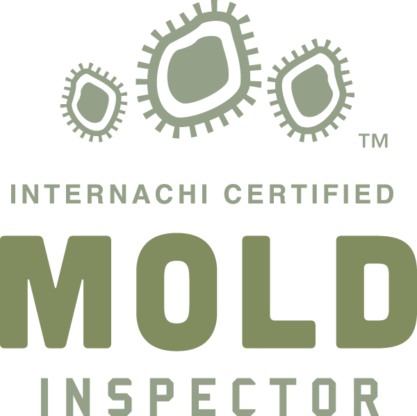 New Orleans mold inspection near me